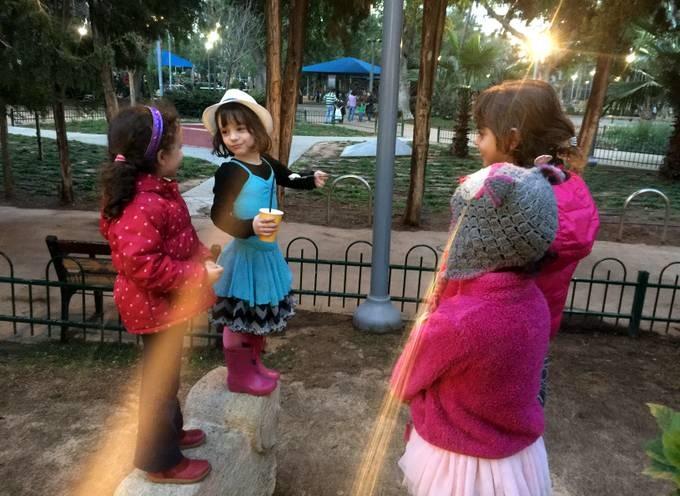 מפגש פסגה בגן מאיר