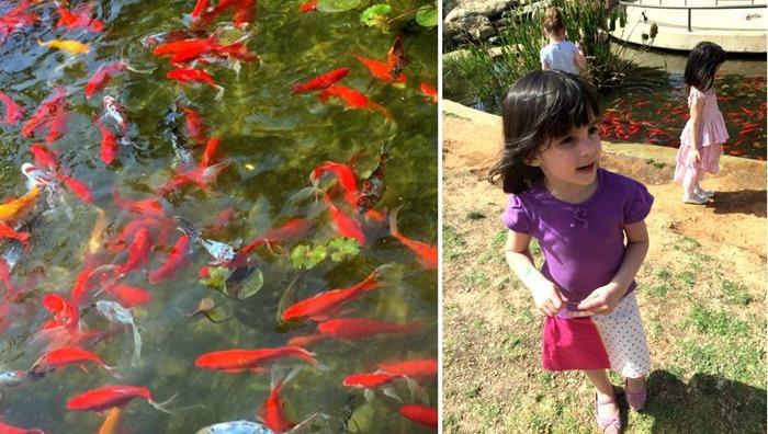 הגינה של קריית ספר, פנינה תל-אביבית