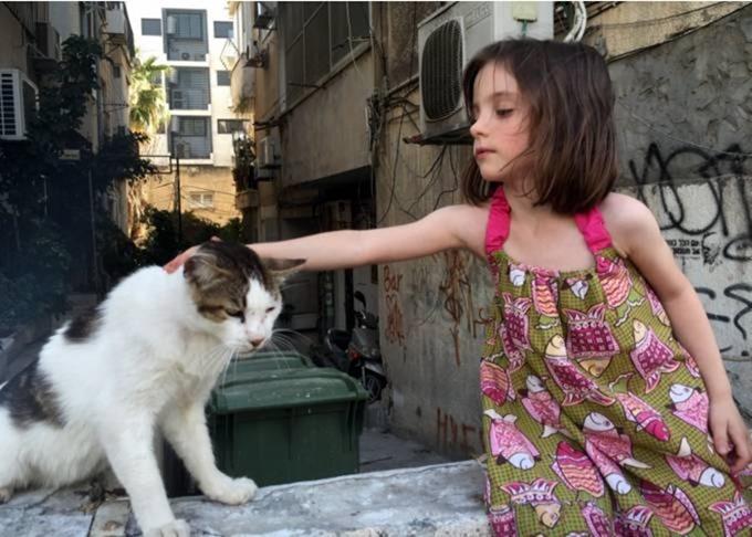 החתול סושי ברחוב בוגרשוב
