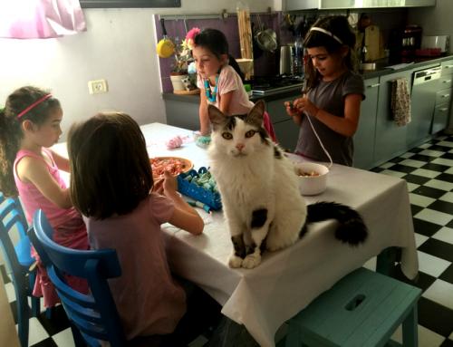 מסיבת יצירה לילדים עם פסטה